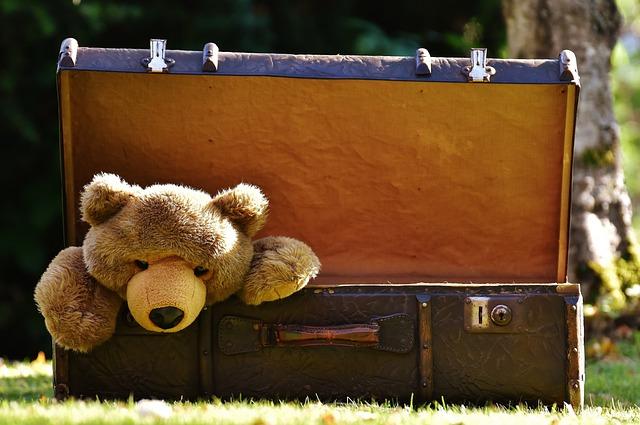 Luggage, Antique, Teddy, Soft Toy, Stuffed Animal, Toys