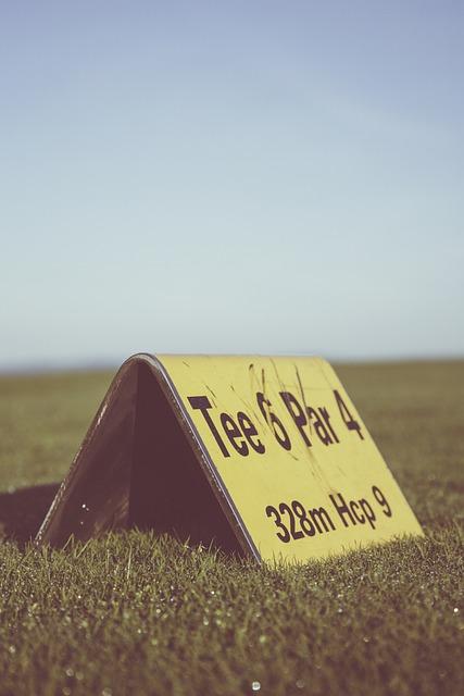 Golf, Golf Course, Tee, Par, Sport, Rush, Golfers