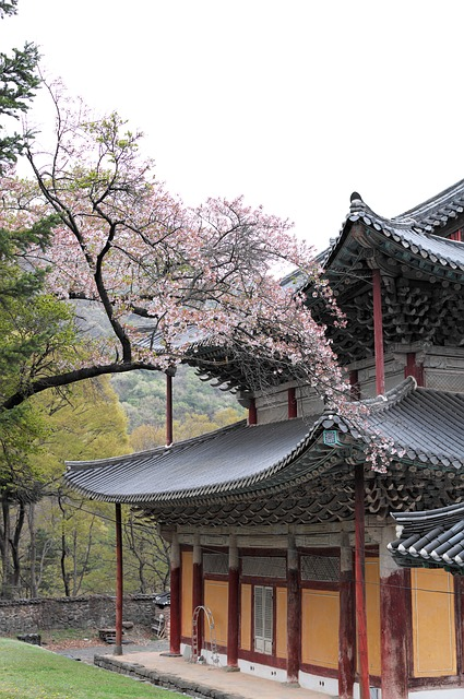 Korea, Temple, Section, Travel, Buddhism, Tourism
