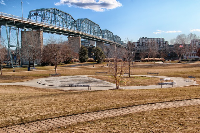 Chattanooga, Tennessee, Orchard Park, Bridge, Buildings