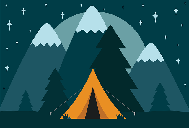 Camp, Camping, Tent, Nature, Adventure, Travel, Night