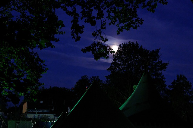Medieval Market, Army Camp, Tents, Trees, At Night