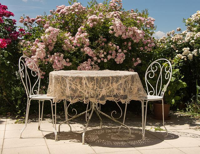 Table, Summer, Roses, Terrace, Chairs, Sun, Flowers