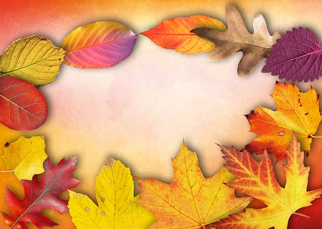 Autumn, Banner, Poster, Text Box, Invitation, Map