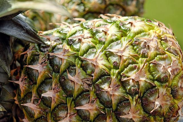 Pineapple, Fruit, Texture, Pattern, Brown, Green