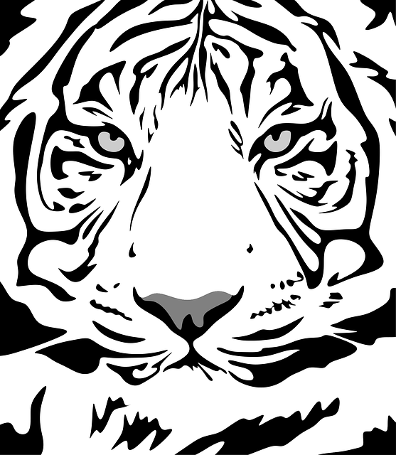 Tiger, Pattern, Animal, Design, Flat, Texture, Fabric