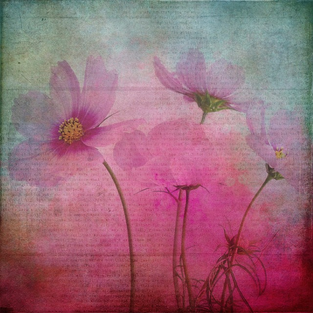 Texture, Background, Flowers, Flower, Plant, Nature