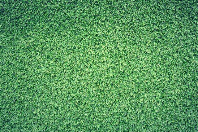 Field, Grass, Green, Lawn, Texture, Background