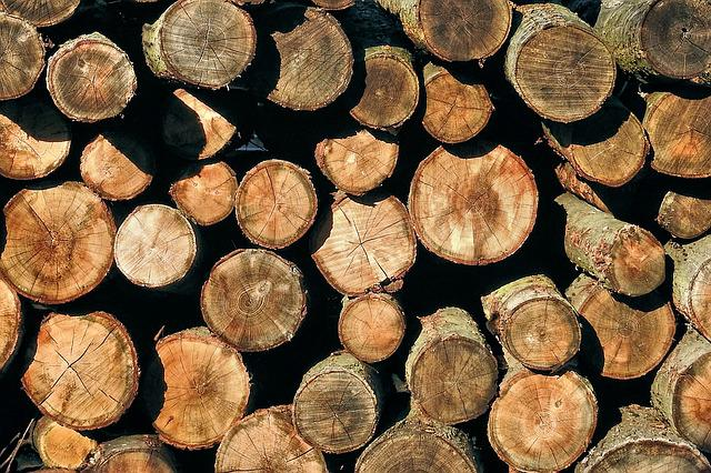 Holzstapel, Texture, Wood, Nature, Stacked Up