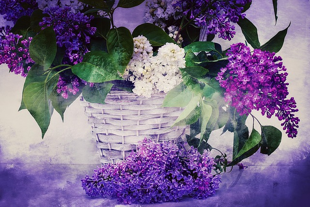 Texture, Background, Lilac, Lilac Bouquet, Flowers