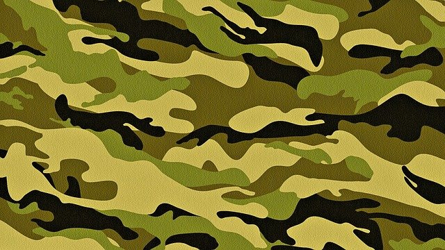 Texture, Camo, Soldier, Surface, Green, Material