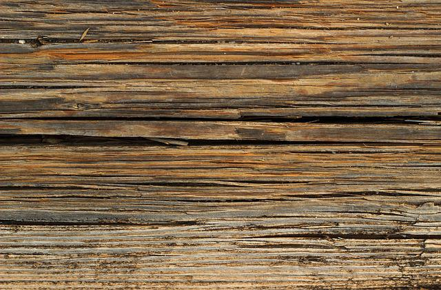 Wood, Texture, Background, Nature, Background Texture