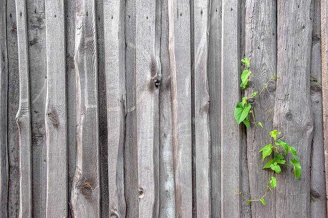 Fence, Texture, Old, The Structure Of The, Wood, Boards