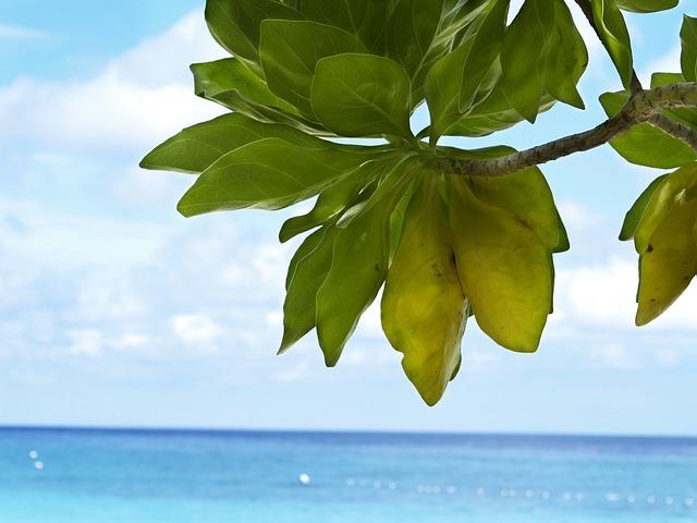 Phuket, Thailand, Similan, Phanga Nga, Phuket Beach