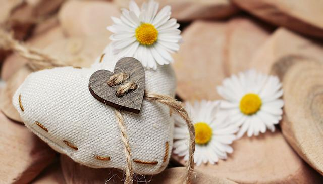 Daisy, Heart, Thank You, Love, Romantic, Romance