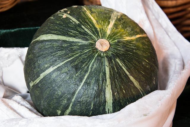 Pumpkin, Vegetables, Thanksgiving, Harvest, Green