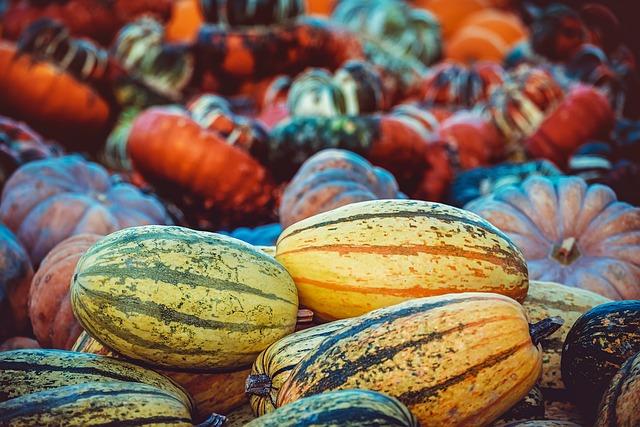Pumpkins, Harvest, Autumn, Vegetables, Thanksgiving