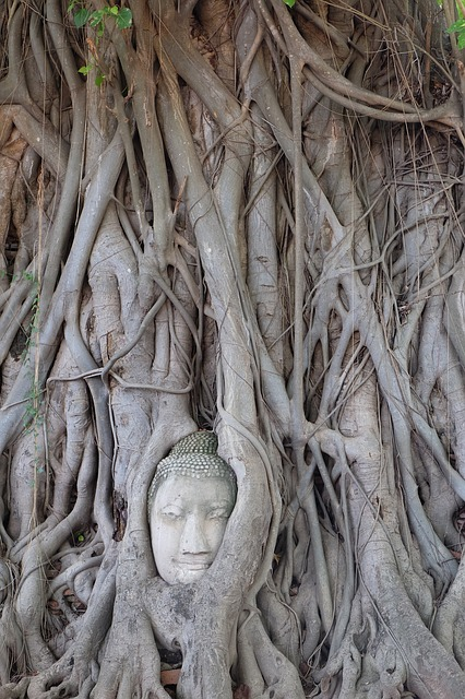 Thailand, The Ancient Capital, Buddha Statues, Miracle