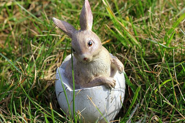 Bunny, Easter Holidays, Decoration, The Environment