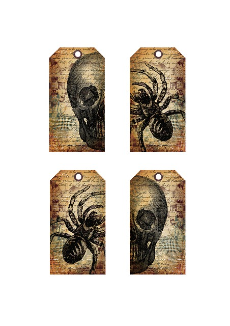 Tags, Halloween, Terrible, Skull, Spiders, The Fear