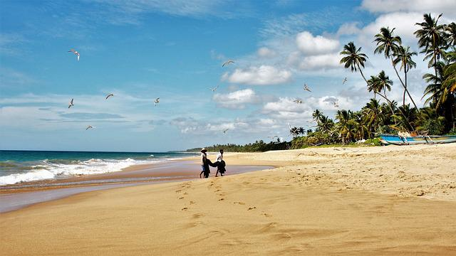 Sri Lanka, Palm Trees, Characters, The Fisherman, Sand