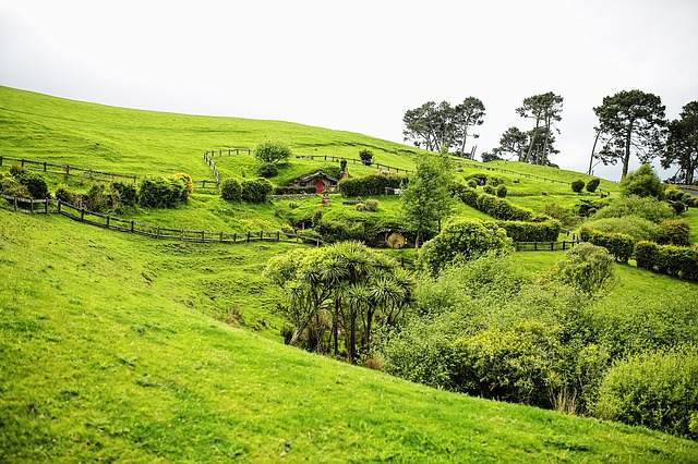 New Zealand, Ring Shot, The Hobby, The Shire, Matamata