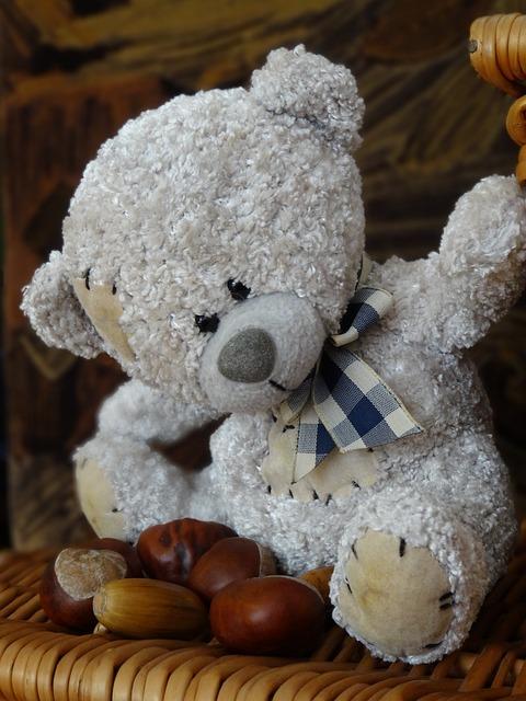 Teddy Bear, The Mascot, Plush Mascot, Plush, Toy