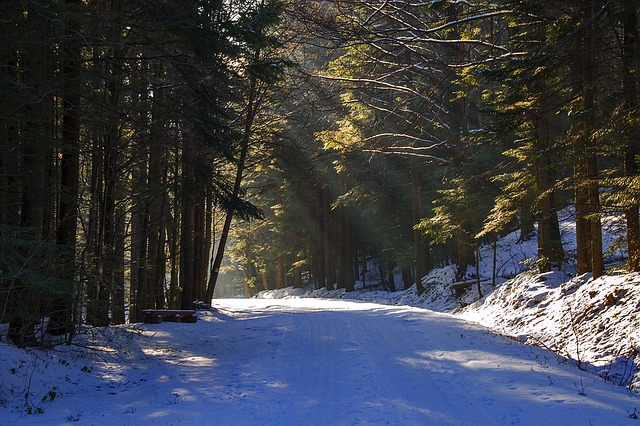 Snowy Road, The Road To The Light, Peace Of Mind