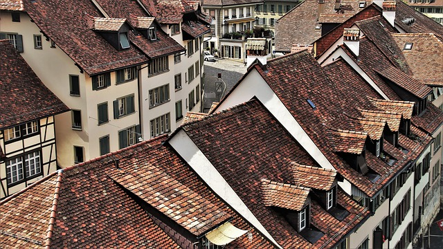 The Old Roof, The Roof Of The, Architecture
