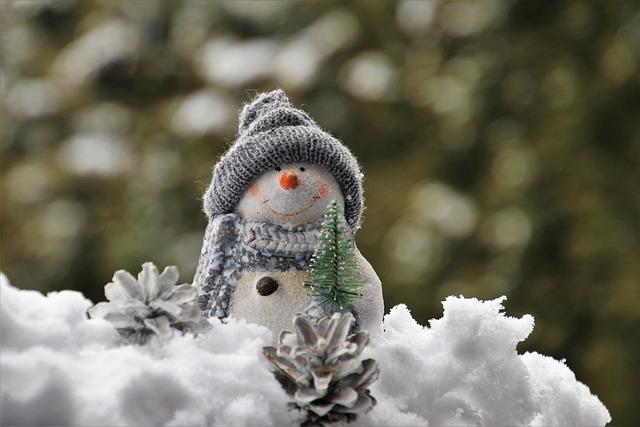 Snowman, Bokeh, White, The Background, The Scenery
