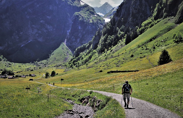 Hiking, Trekking, Afternoon, The Silence, Meadows