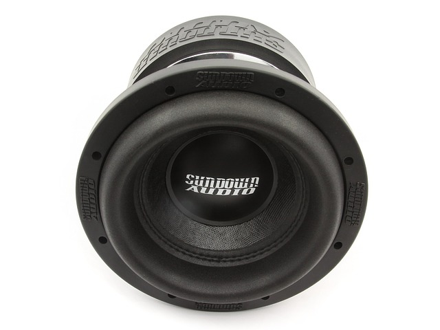 Sundown Audio, Sundown Audio Car Audio, The Subwoofer