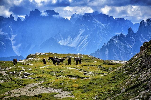 The Three Peaks Of Lavaredo, Horses, Mountain
