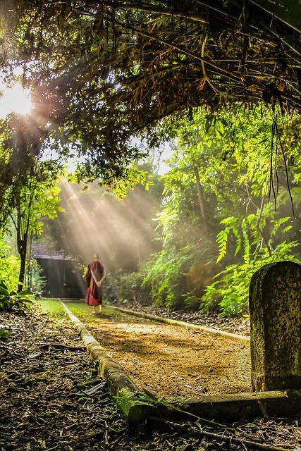 Theravada Buddhism, Walking Meditation, Monk, Buddhism