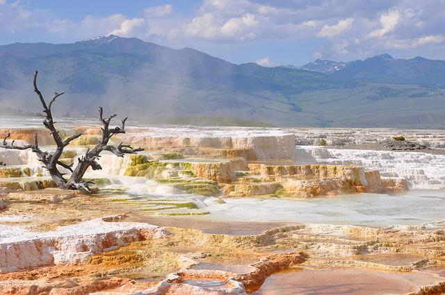 Thermal, Hot Springs, Yellowstone, Landscape