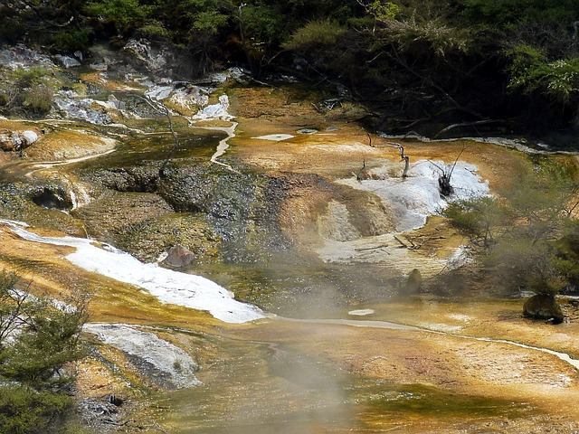Water, Spa, Thermal Water, New Zealand, Nature