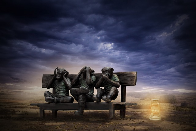 Three Wise Monkeys, See Nothing, Nothing To Say