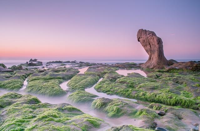 Vietnam, Co Thach, Thuan Viet Nam War, The Sea, Rock