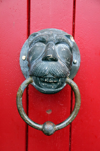 Doorknocker, Red, Lion, Lion Head, Ring, Thumper, Input