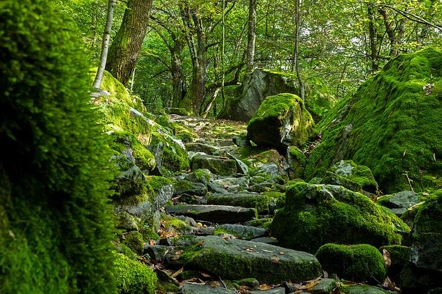 Trail, Ticino, Val Bavona, Val Maggia, Switzerland