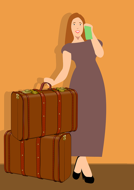 Traveling, Luggage, Ticket, Smiling, Vacation, Woman