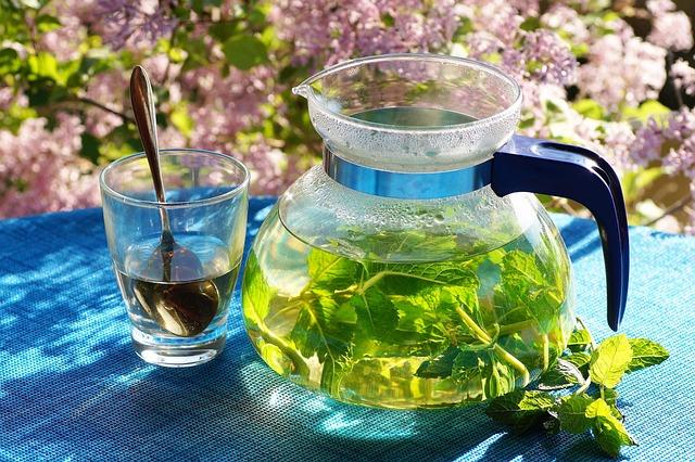 Fresh, Mint, Tea, Herbal, Drink, Tickets, Healthy
