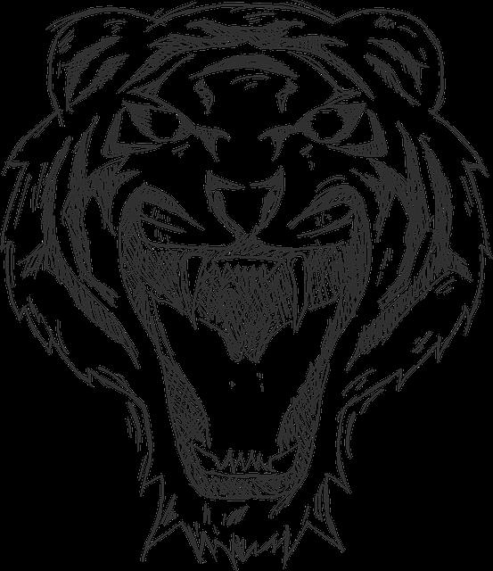 Tiger, Cartoon, Animal, Illustration