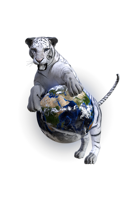 White Tiger, Tiger, Globe, World, Wildcat