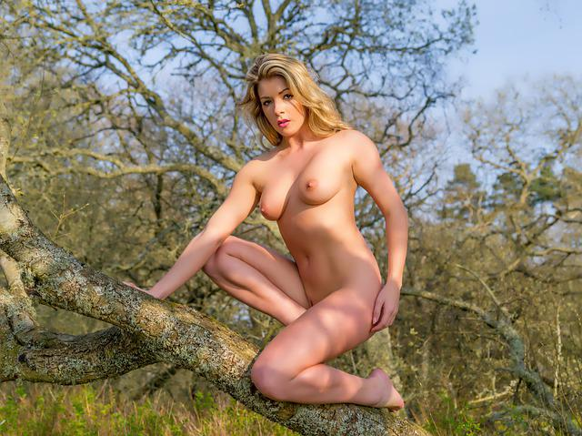 Model, Tillie Feather, Nature, Tree, Branch, Wood