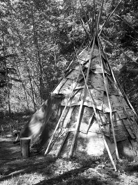Wigwam, Tepee, Tipi, Teepee, Native American, American