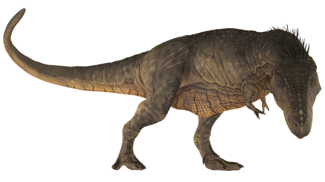 Dinosaur, Tirannosaurus, Extinct, Dino, Animals, T-rex