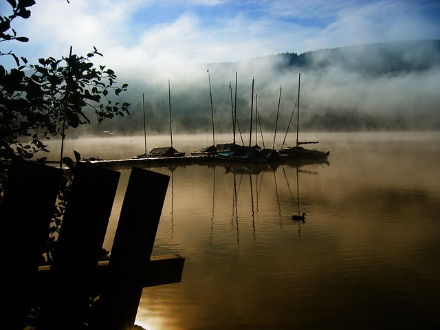 Black Forest, Lake, Titisee, Germany, Atmosphere, Boats