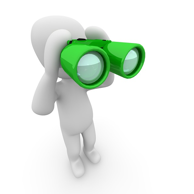 Binoculars, Search, See, To Find, Watch, Overview