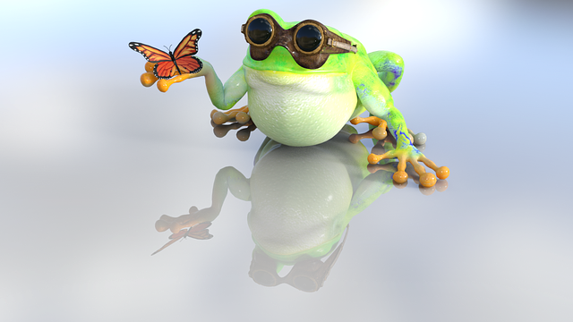 Frog, Toad, Nature, Butterfly